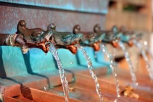 el agua en las dietas