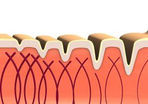 suplemento de colágeno